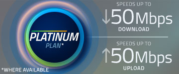 Fiber Platinum Plan